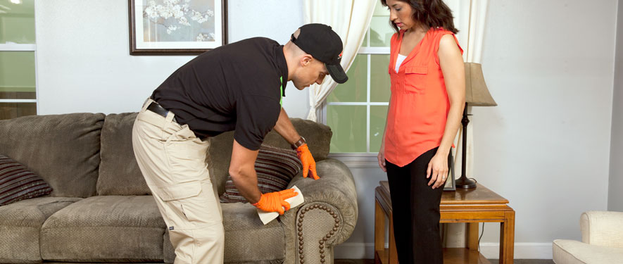 Hackensack, NJ carpet upholstery cleaning